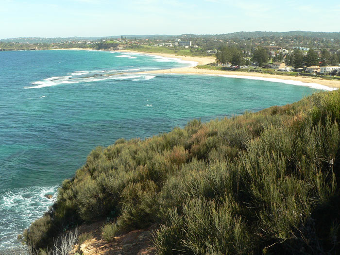 Mona Vale Beach View From Healand