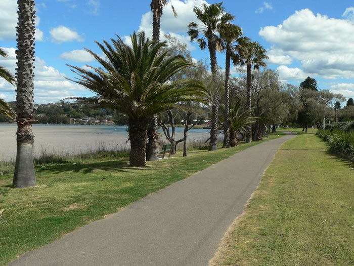 Narrabeen Lagoon Walking Track