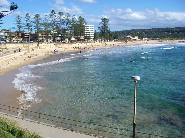 What a view of Dee Why Beach