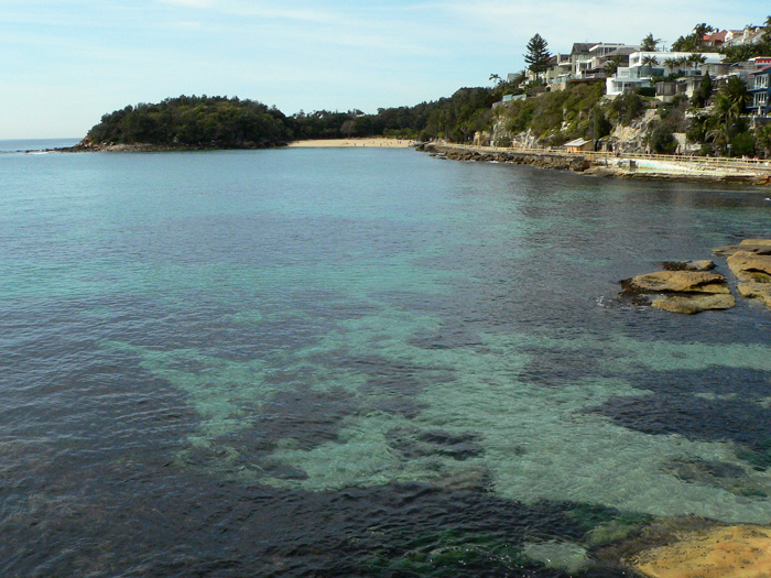 Looking at Shelly Beach